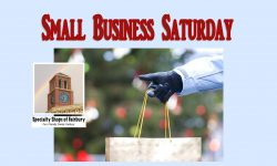 Web-Small Business Sat