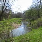 creekScene1