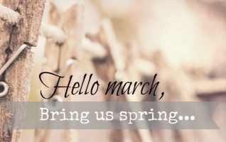 Goodbye Winter – Hello Spring! Welcome March! March is a wonderful month, yes, we still have some chilly days and strong March winds, but Spring is on its way – March 20th to be exact! March brings a spring to our step with yards full of Robins, Daffodils and Easter...