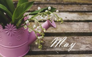 It's the Merry, Merry month of May! A time to stroll in the park and breathe in the fragrance of bright, beautiful blooms. May is not only packed with colorful flowers, it's also packed with a lot of events. The first Saturday of May is busy, so let's start it...